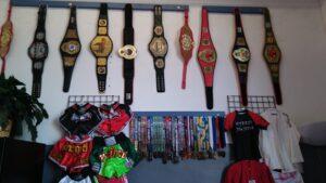Martial Arts Champion Belts